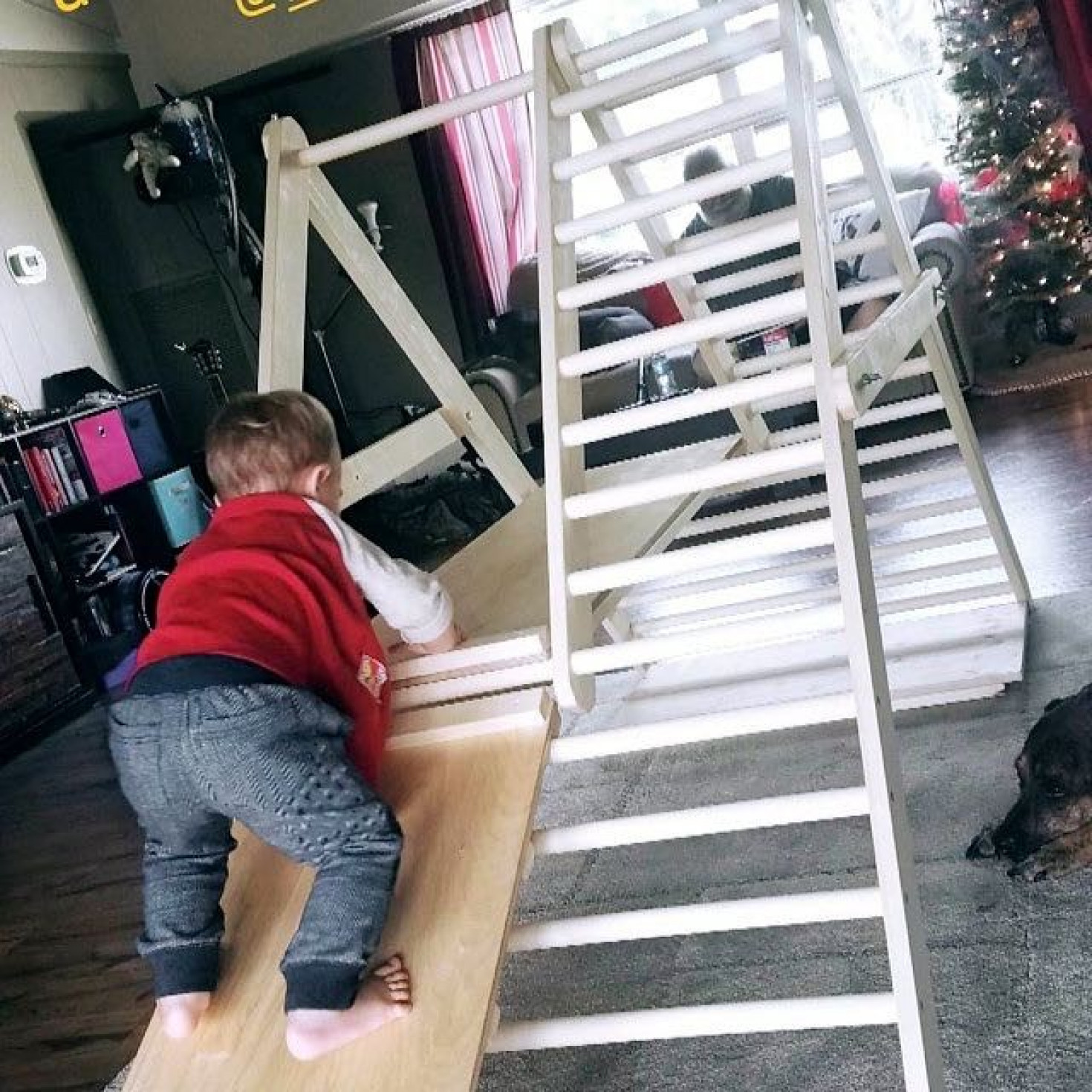 A customized climbing ladder for toddlers